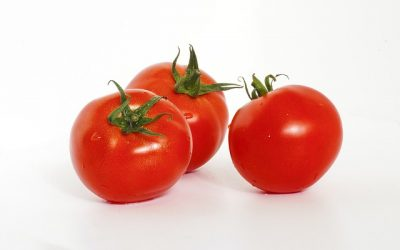 No Small Tomatoes: How to Maximize Social Media Value
